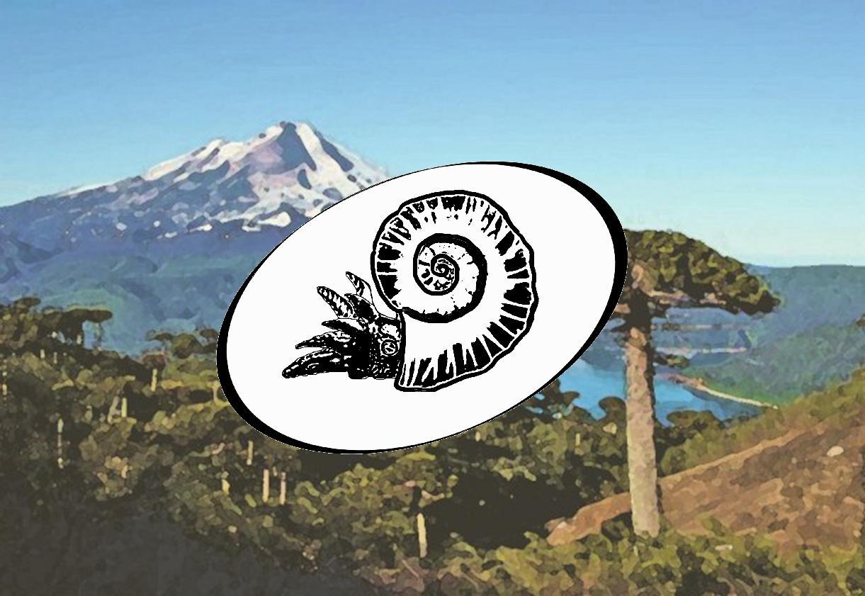 Fossiliensuche Hintergrund