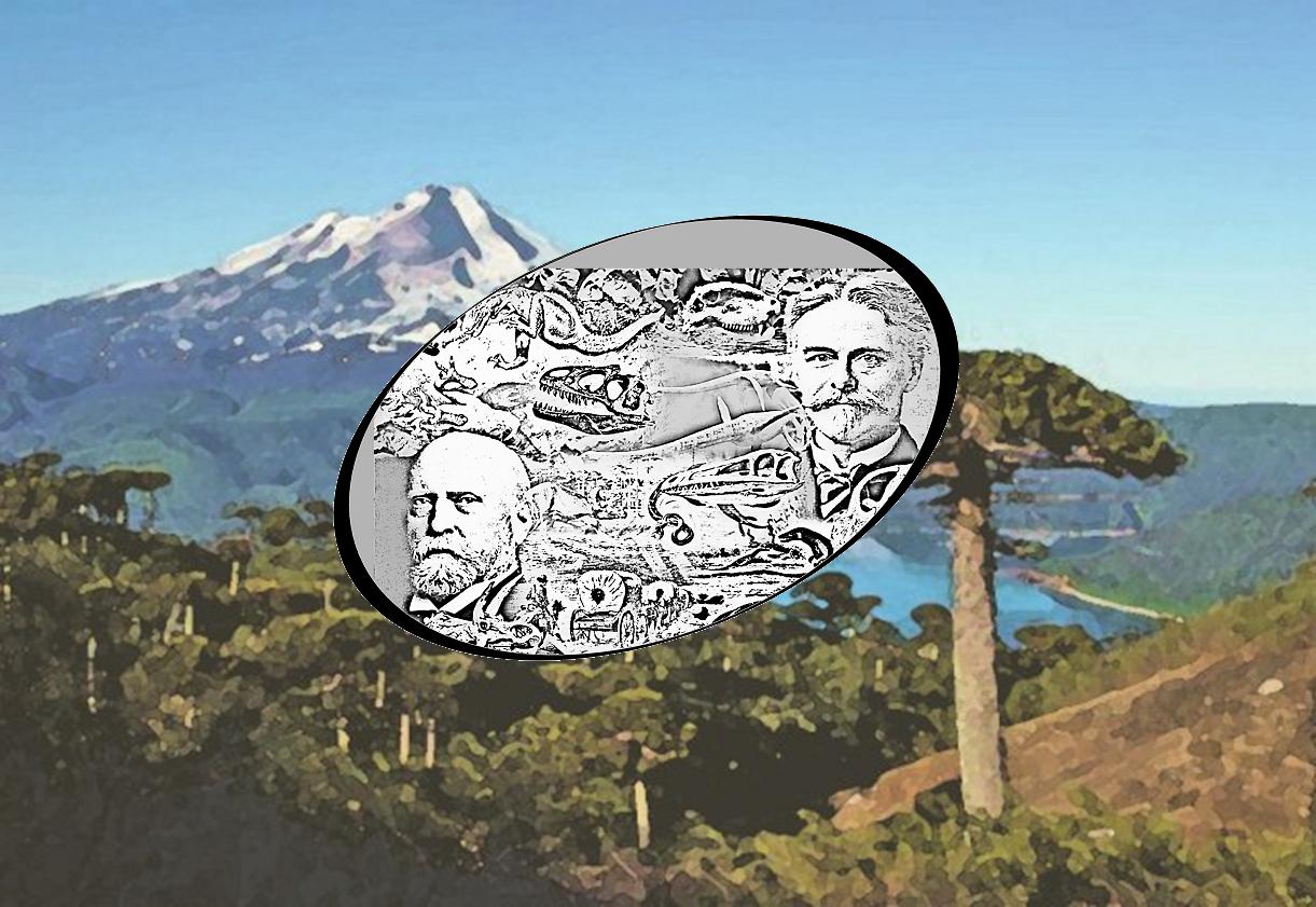 Geschichte der Urzeitforschung Hintergrund