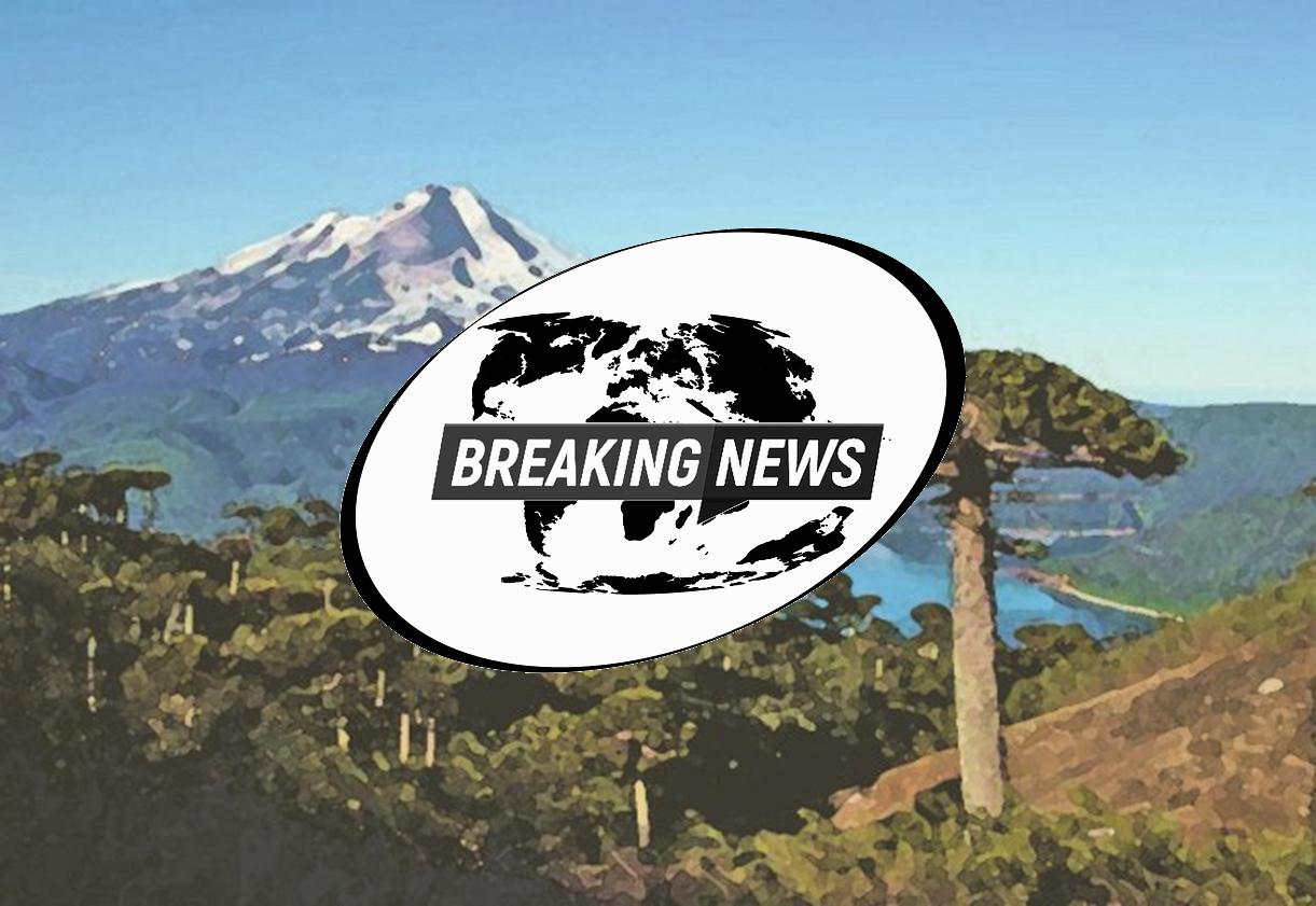 Paläo-News Hintergrund